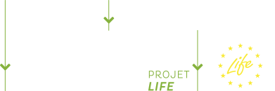 logo projet Life Cool Low Noise Asphalt
